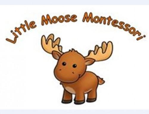 Little Moose Montessori
