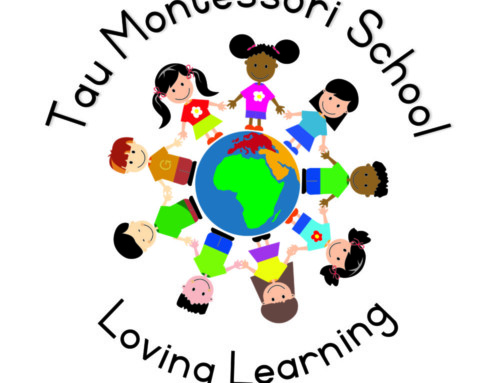 Tau Montessori School Vacancy