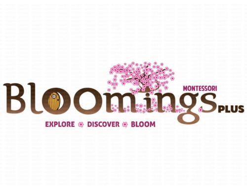 Bloomings Montessori Plus