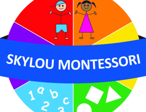Skylou Montessori Vacancy