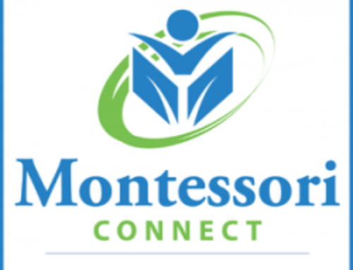 Montessori Connect The Children's Workshop Primary